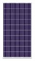 Immagine di Pannello fotovoltaico 215W - GPM220P-B-60